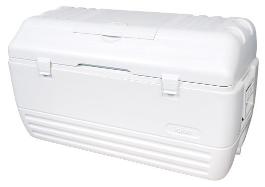 Where to find Igloo MAXCold Chest Cooler in Lloydminster